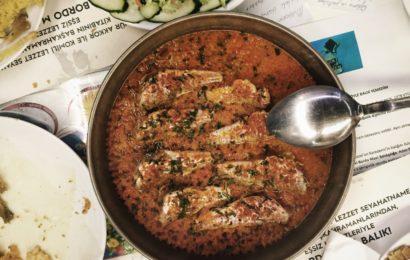 BordoMavi Balık